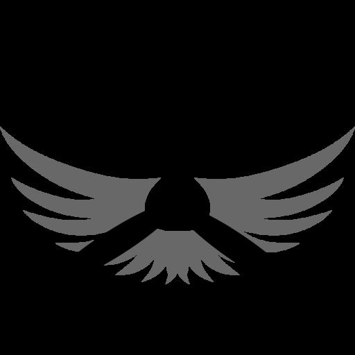 Swan Aviation Club